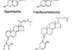 Βιταμίνη D